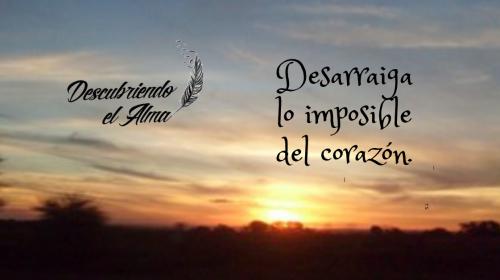 Esperanza 4